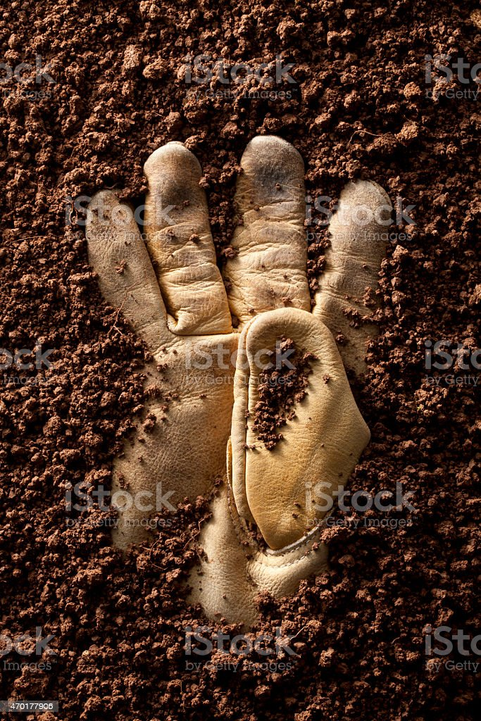 Work glove in dirt stock photo