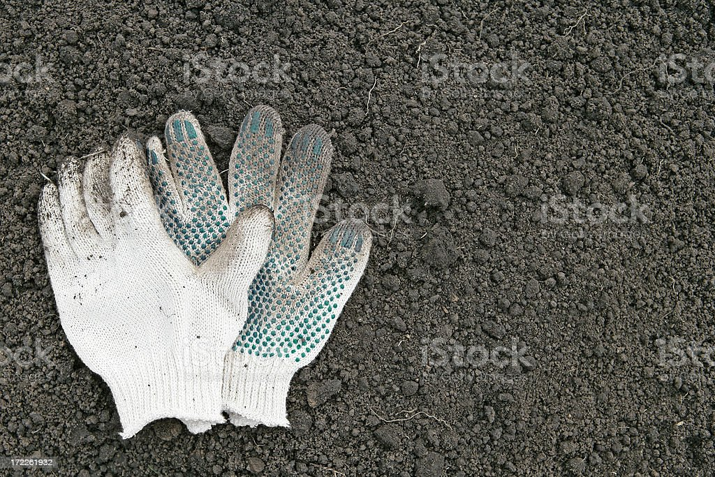 Work gloves in dirt royalty-free stock photo