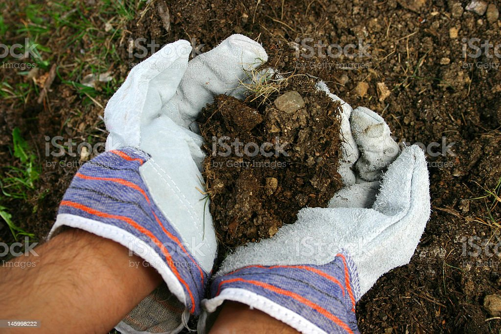 work gloves in the garden royalty-free stock photo