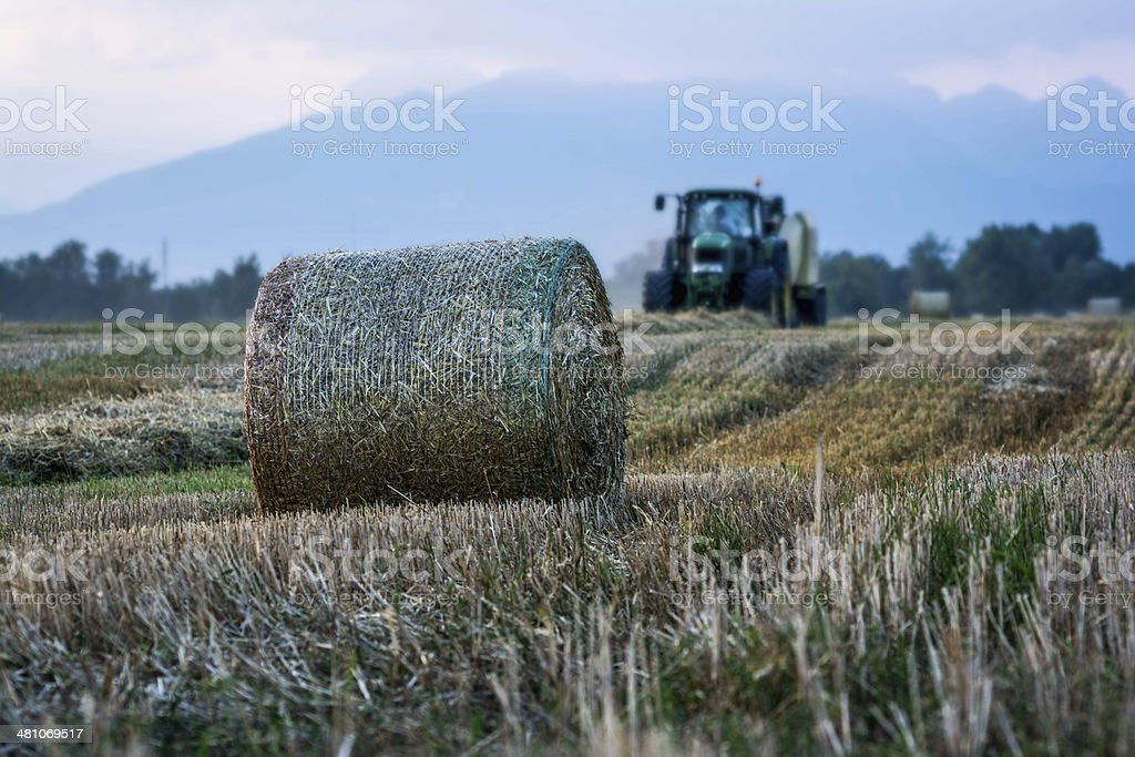 Work in the field stock photo