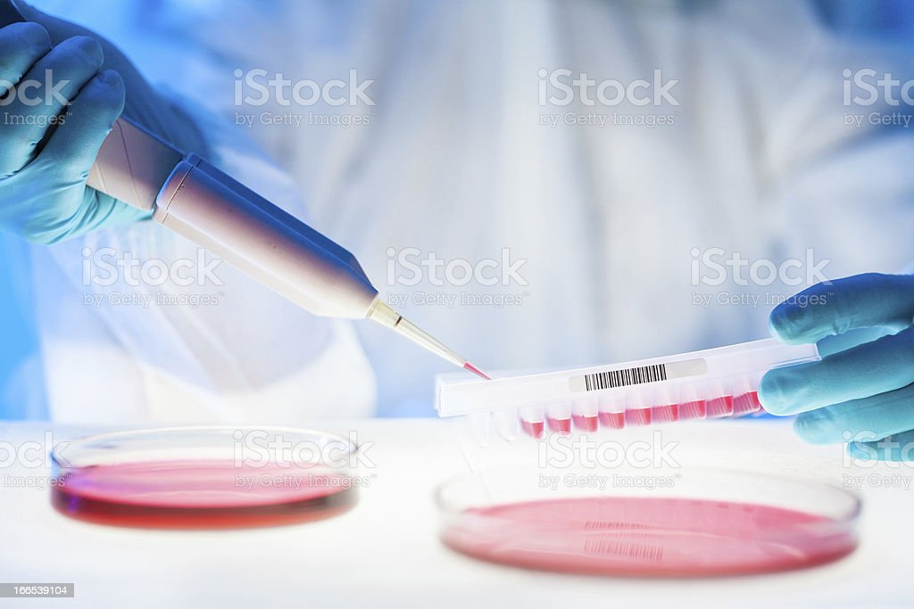 Work in the laboratory with a high degree of protection stock photo
