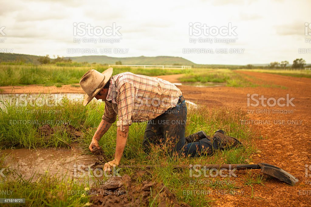 Work in the Outback stock photo