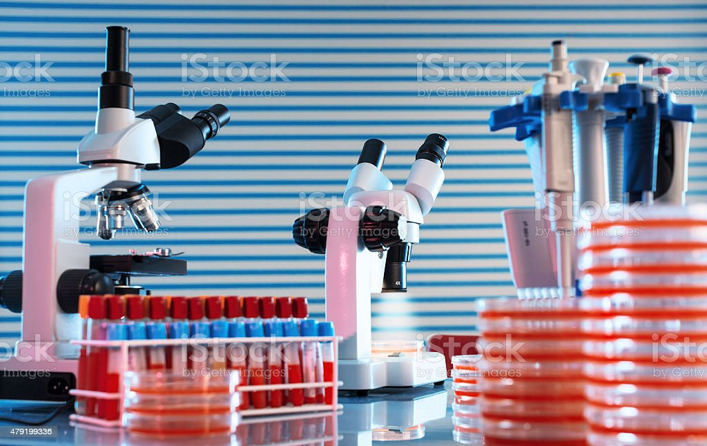 workbench in microbiological laboratory stock photo