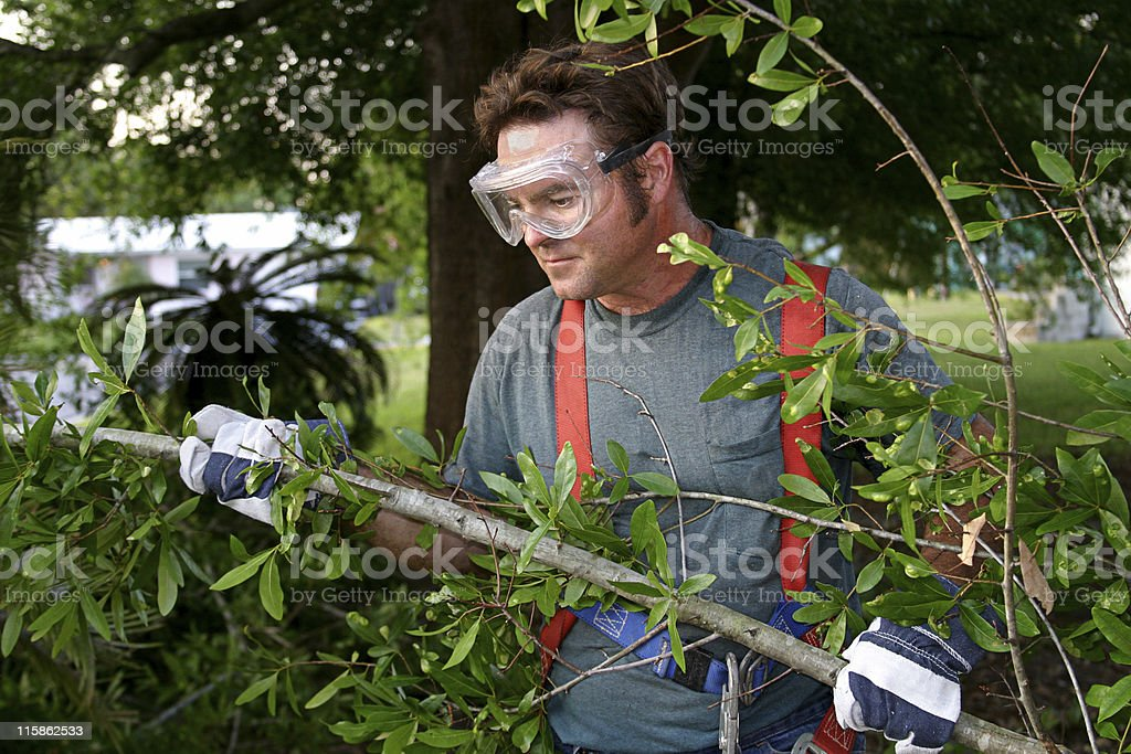 Worker Clearing Hurricane Debris stock photo