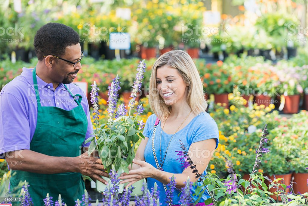 Worker in plant nursery helping a customer stock photo