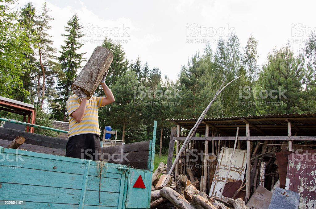 worker man unload tree log firewood from trailer stock photo