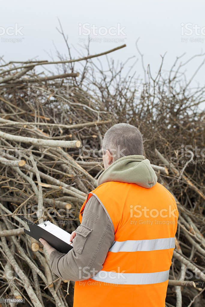 Worker near branches royalty-free stock photo