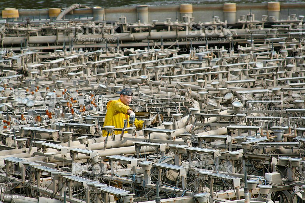 Worker produces the preservation of the fountain stock photo