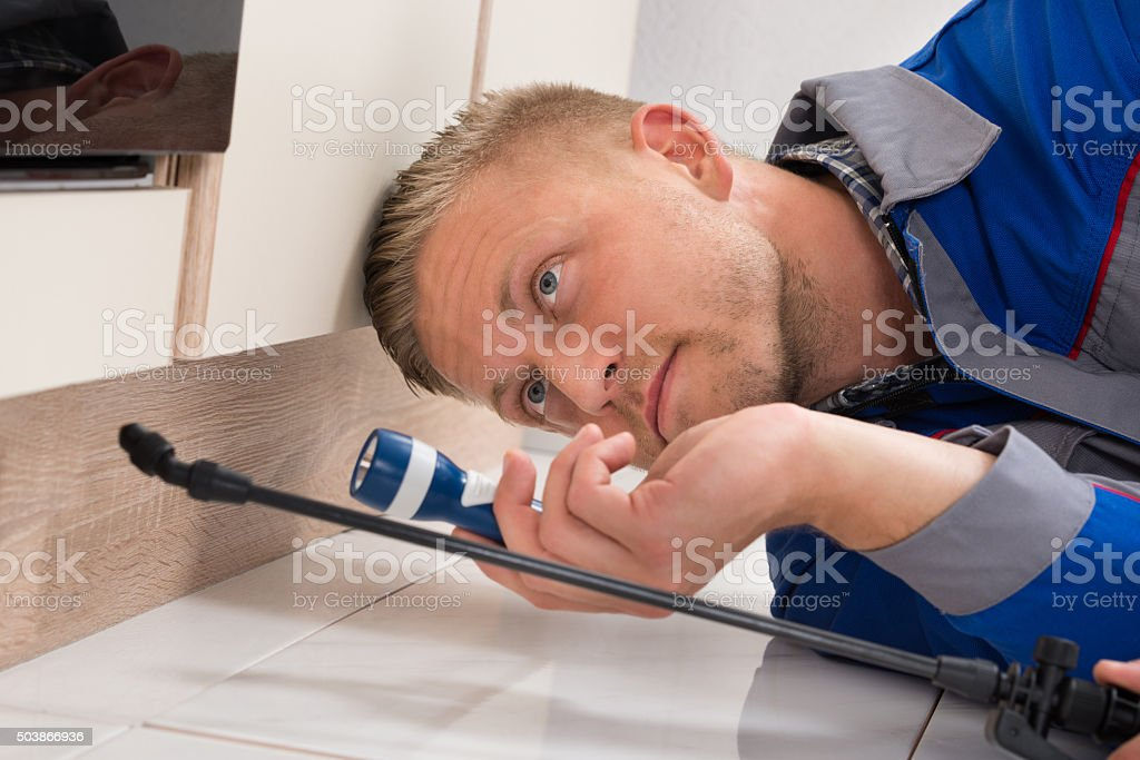Worker Spraying Insecticide stock photo