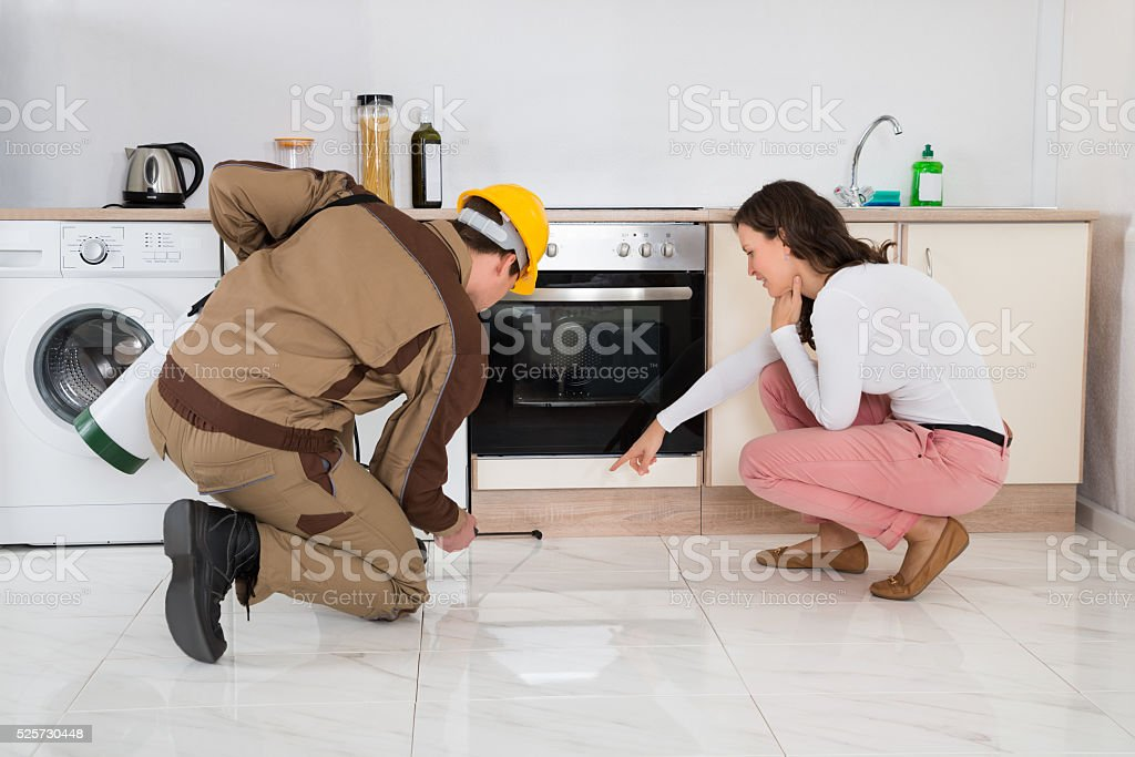 Worker Spraying Insecticides In Front Of Housewife stock photo