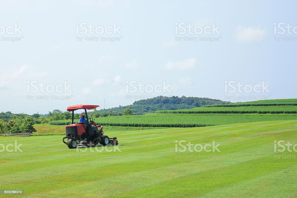 Worker use mower working on the green field stock photo