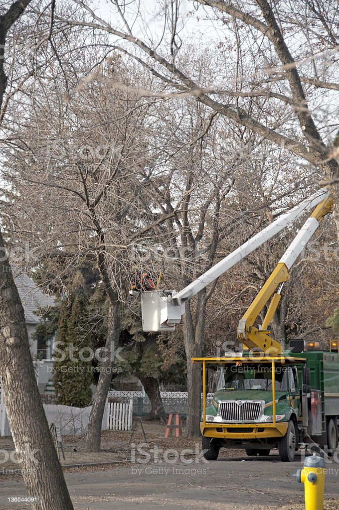 worker using a tree trimming truck on street stock photo