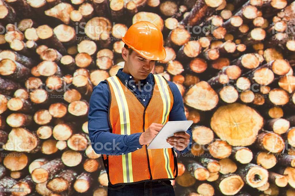Worker using tablet in front of lumber industry stock photo