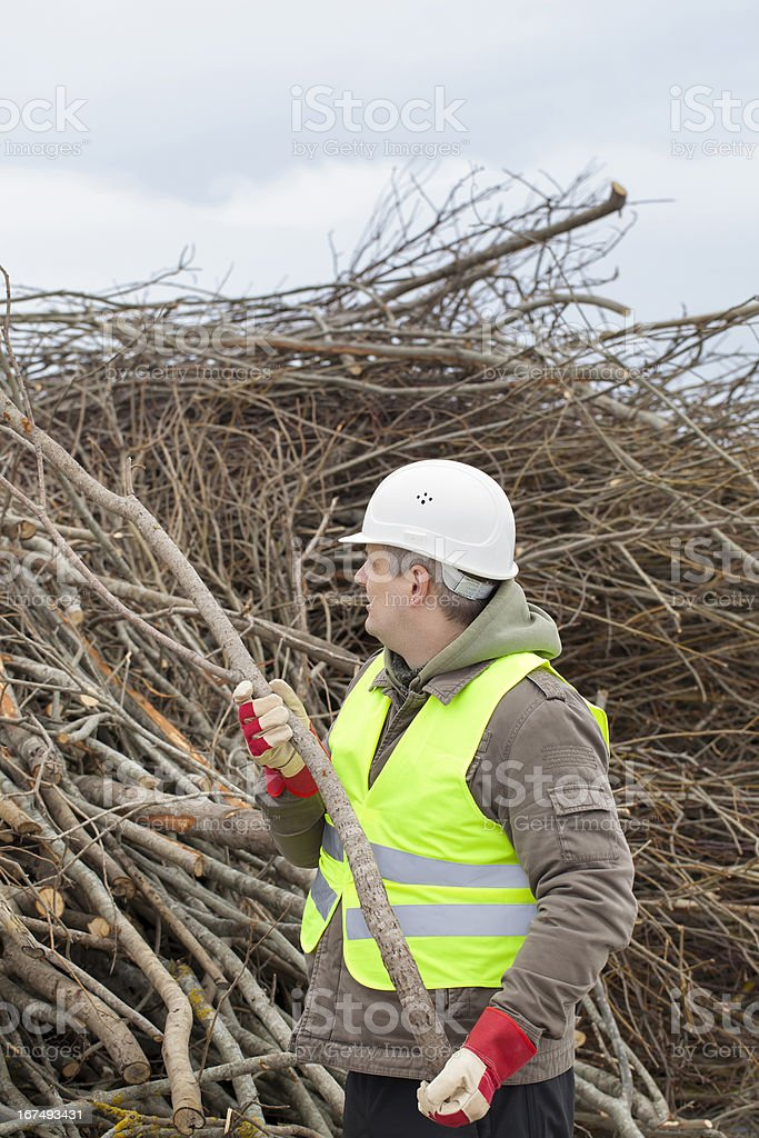 Worker with branches royalty-free stock photo