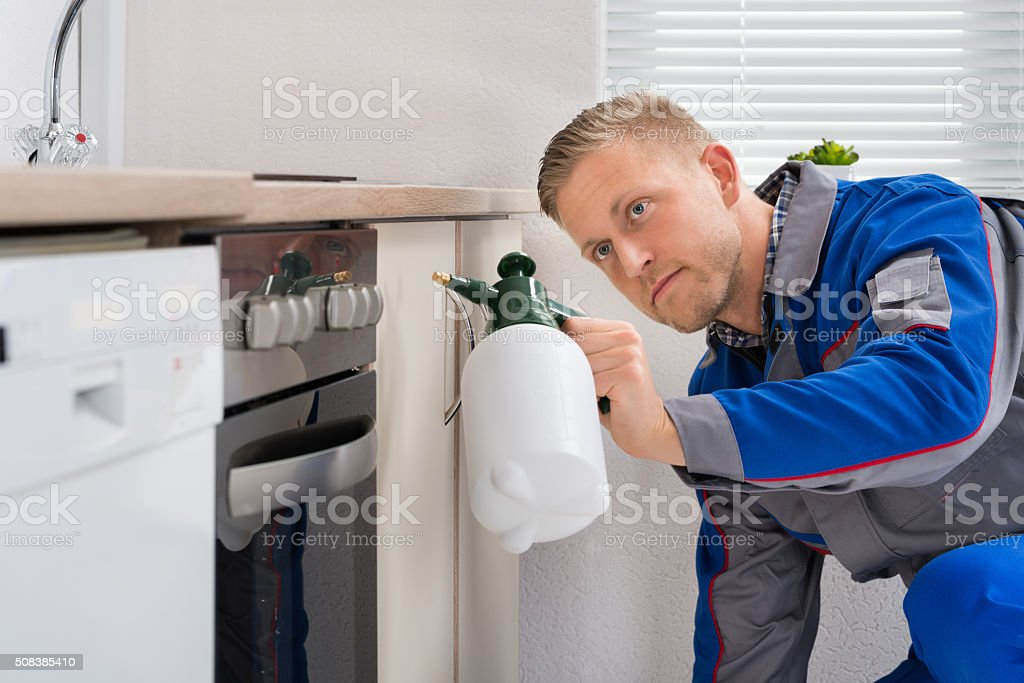 Worker With Pesticide Sprayer stock photo