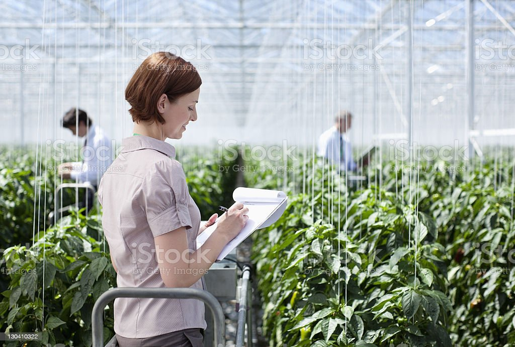 Worker writing on clipboard in greenhouse royalty-free stock photo