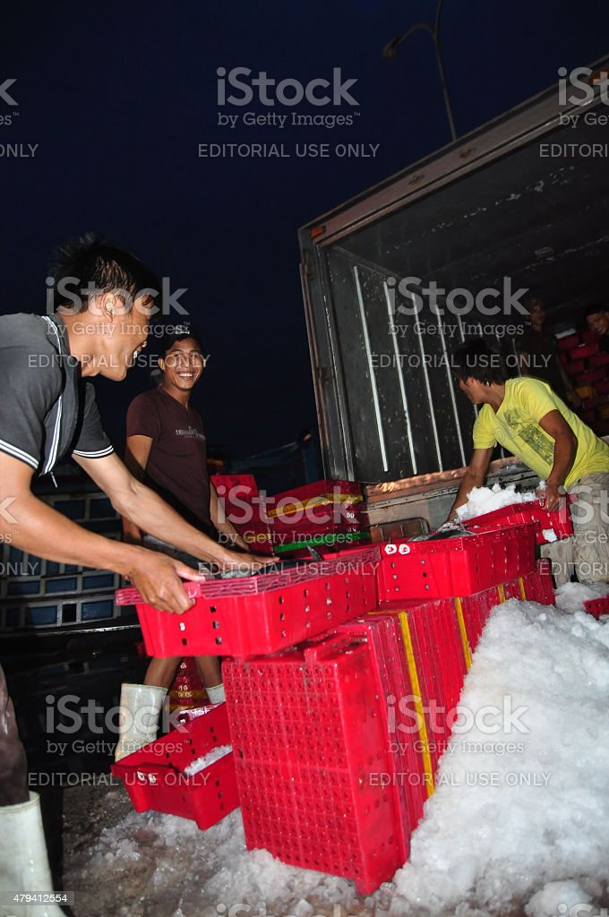 Workers are grinding ice to preserve tuna fish stock photo