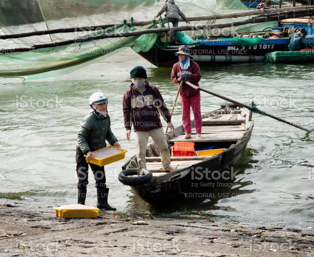 Workers bringing baskets with shrimps to the shoreside. December 26, 2013 - Da Nang, Vietnam stock photo