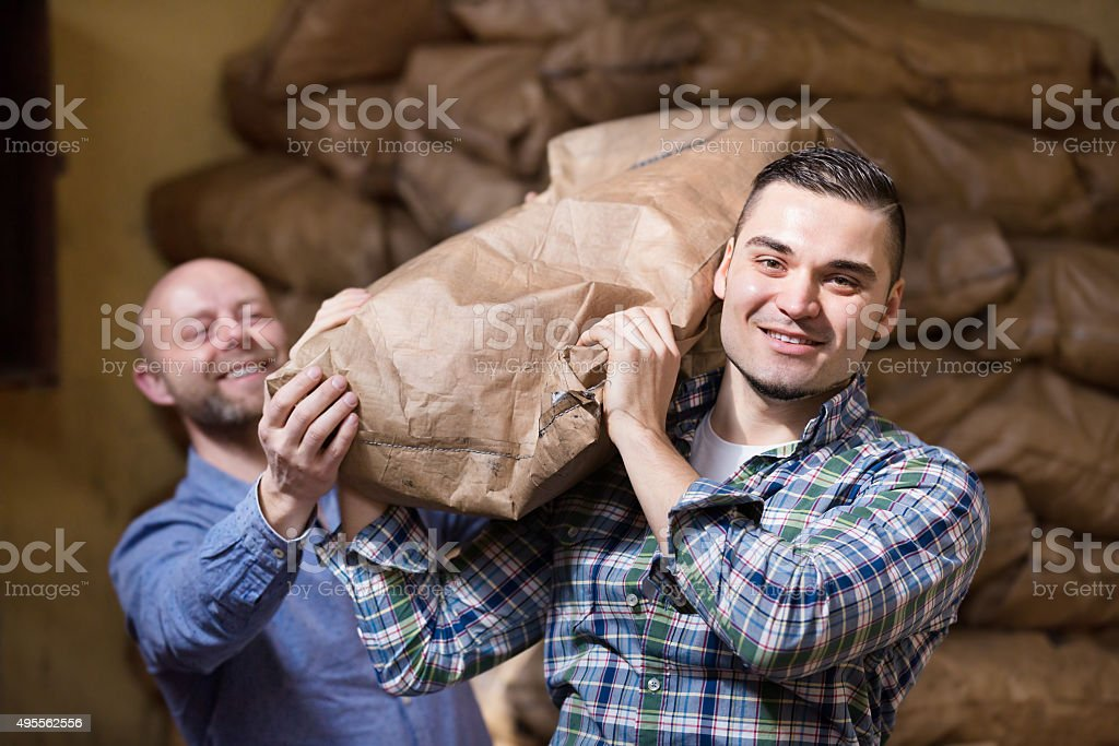 Workers carrying bags of cement stock photo