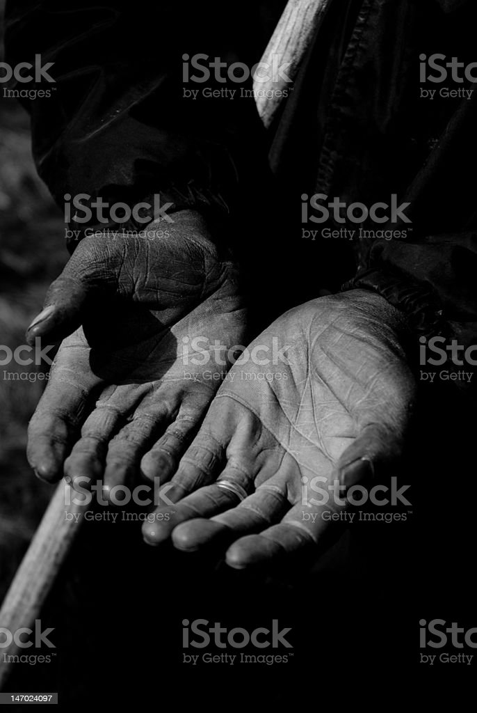 Worker's Hands (Vertical) royalty-free stock photo