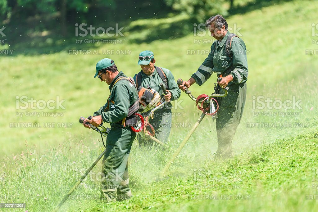 Workers Mowing The Grass In Springtime In Youths Public Park stock photo