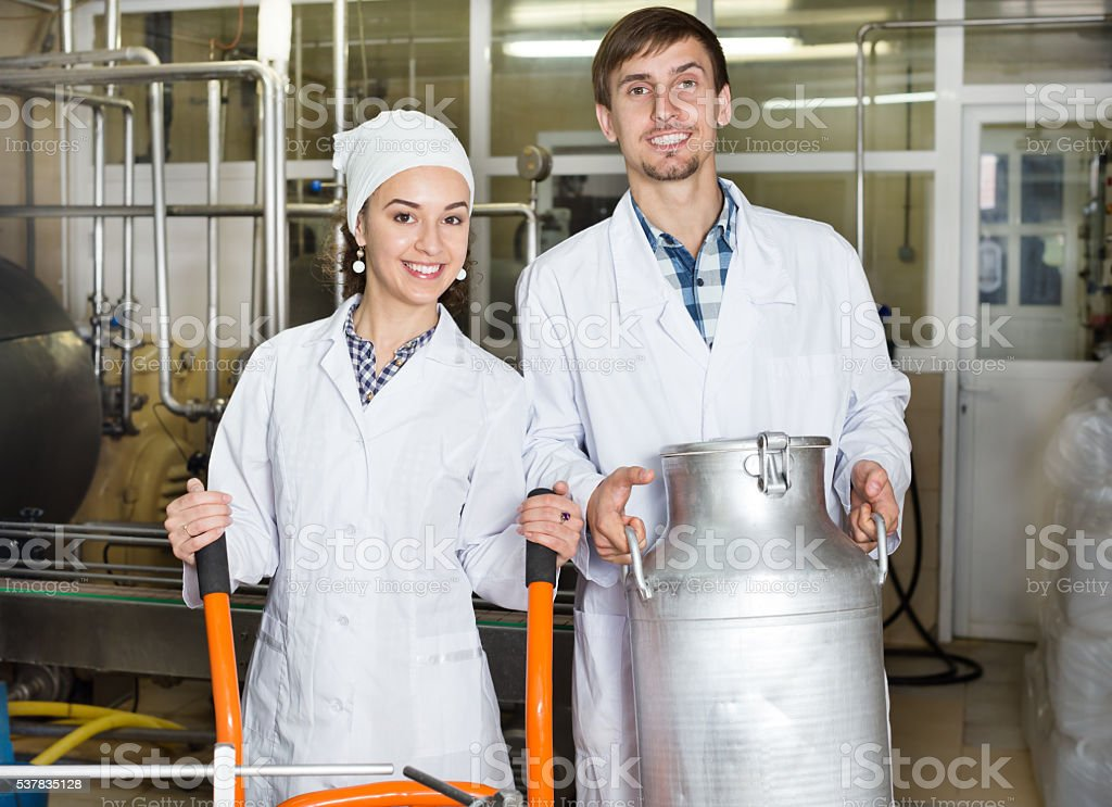 Workers showing dairy production process stock photo
