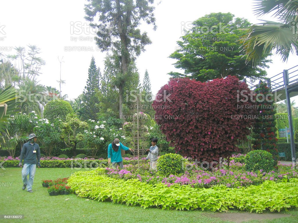 PATTAYA, THAILAND – APRIL 06, 2007: workers, tourists and tropical plants in the Botanical Garden Nong Nooch. stock photo