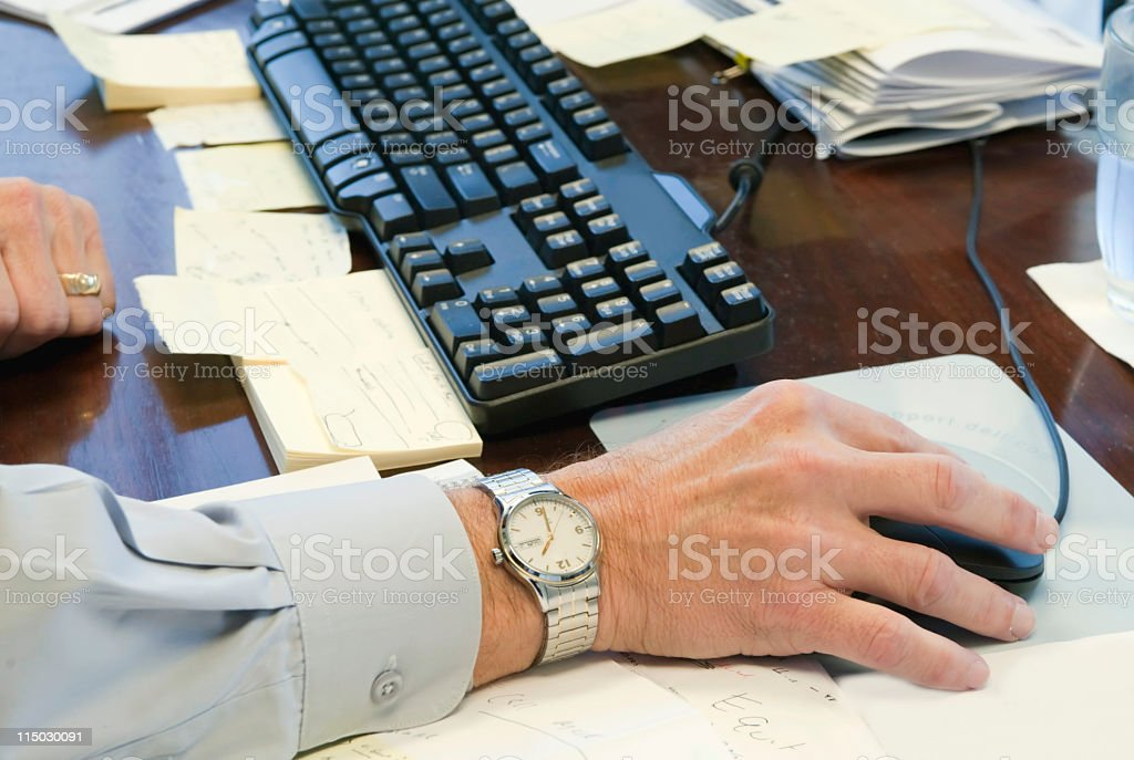 working at the computer royalty-free stock photo