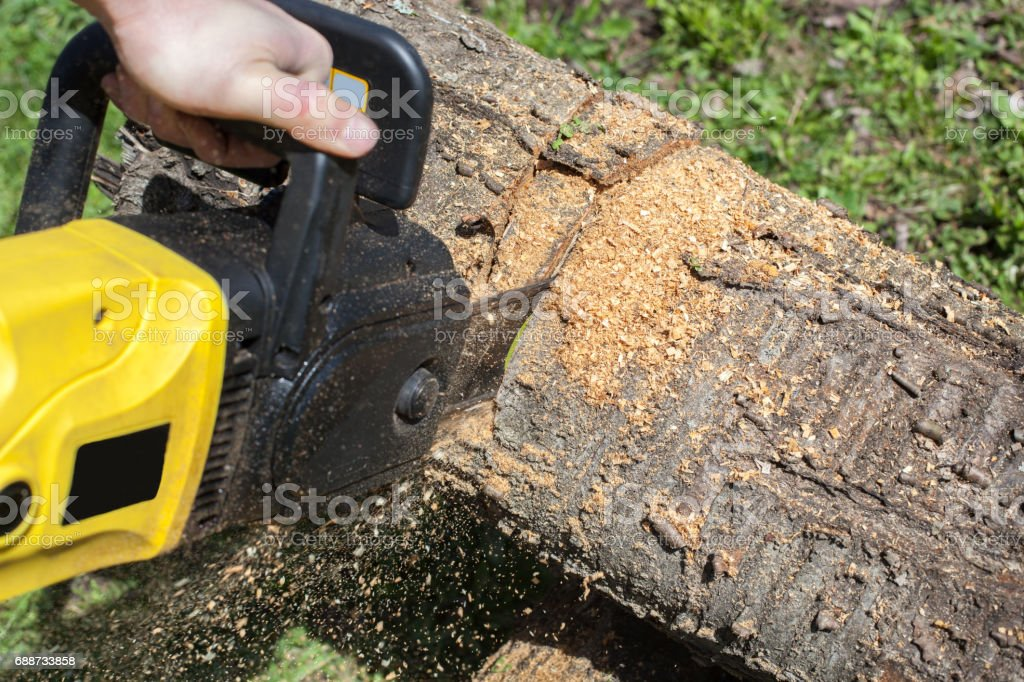 Working chainsaw included. stock photo