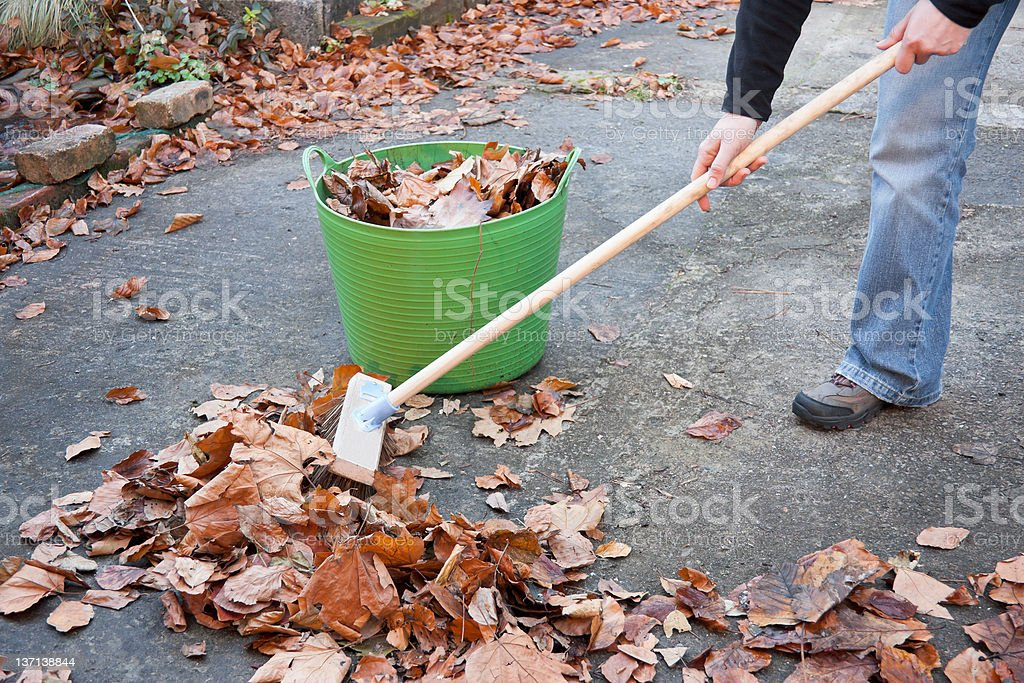 Working Hands Sweeping Autumn Leaves stock photo