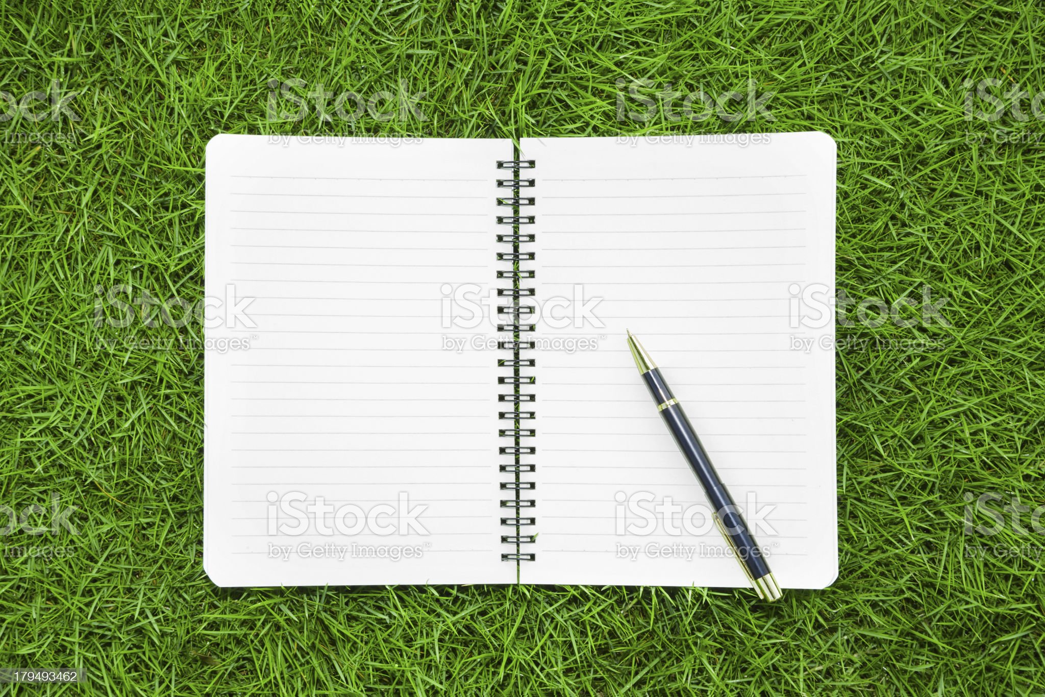 working in nature:Notebook and pen on grass background royalty-free stock photo