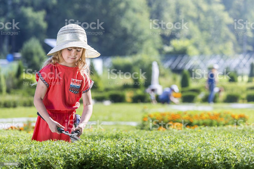Working in summer park royalty-free stock photo