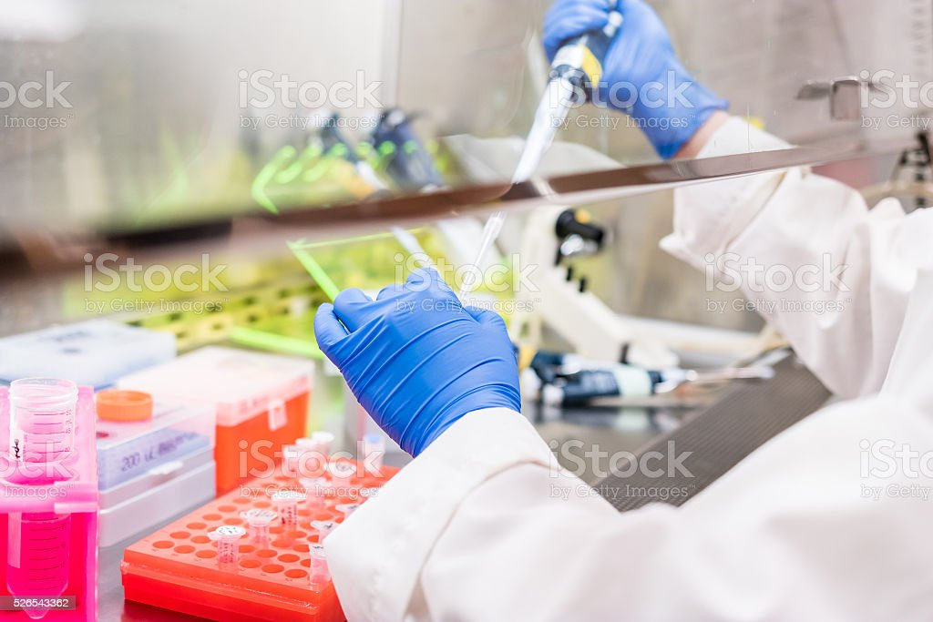 working in the fume hood stock photo