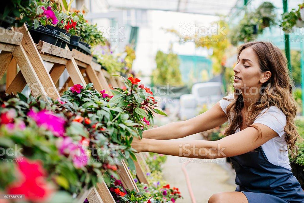 Working in the garden center stock photo