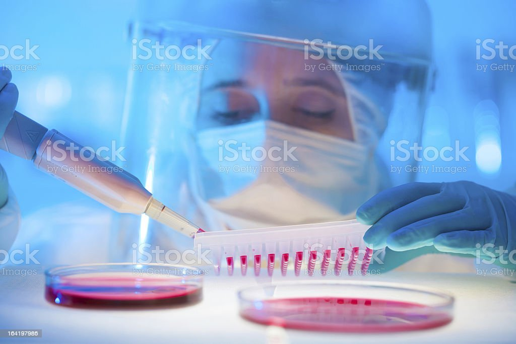 Working in the laboratory with a high degree of protection stock photo