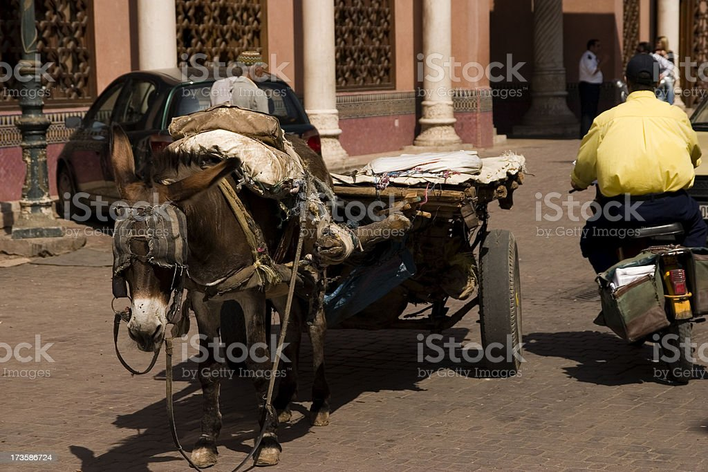 Working mule & moped rider royalty-free stock photo