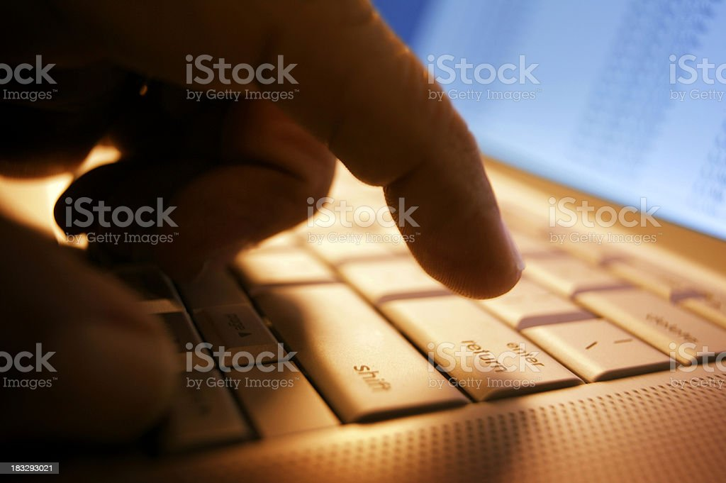 Working on a Laptop 2 royalty-free stock photo