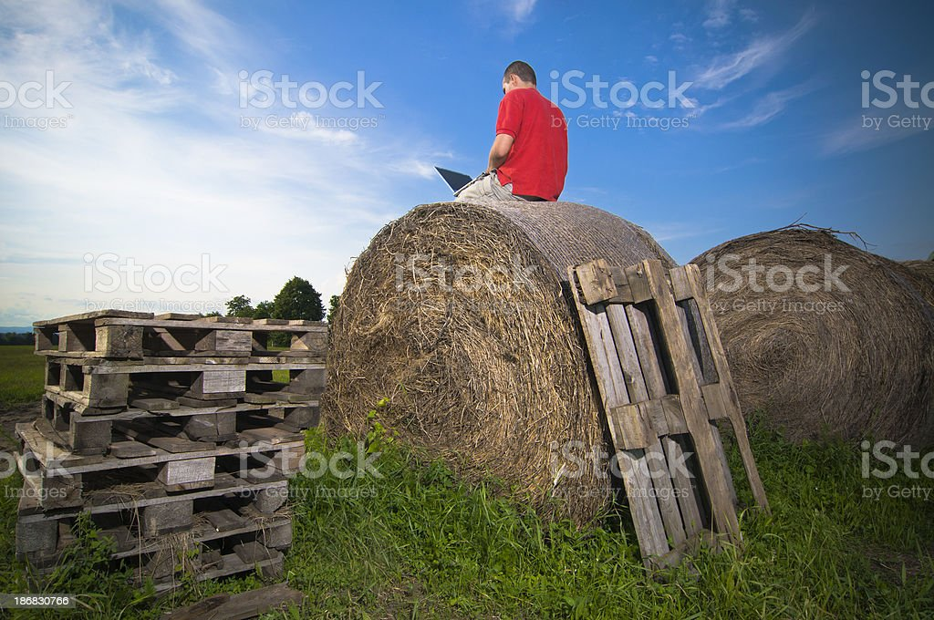 Working on bale royalty-free stock photo
