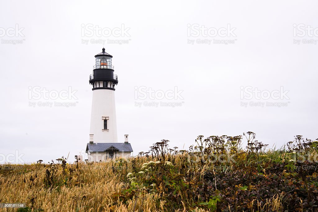 Working powerful lighthouse on high hill covered grass wild flowers stock photo