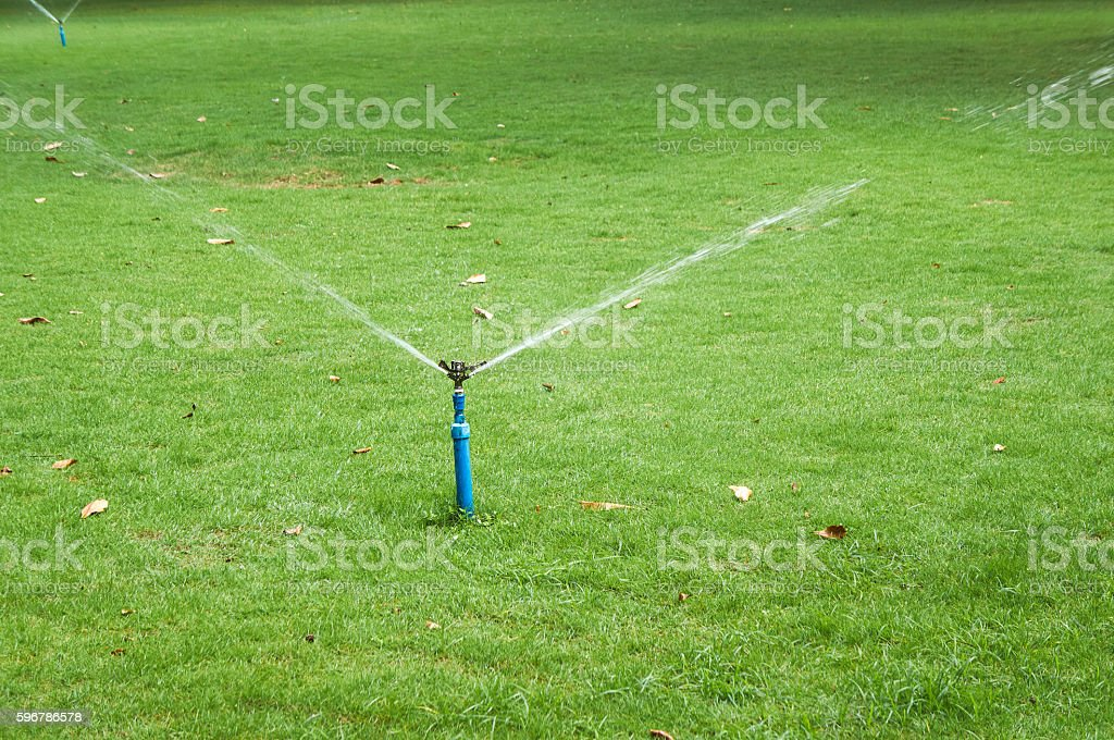 Working sprinkler stock photo