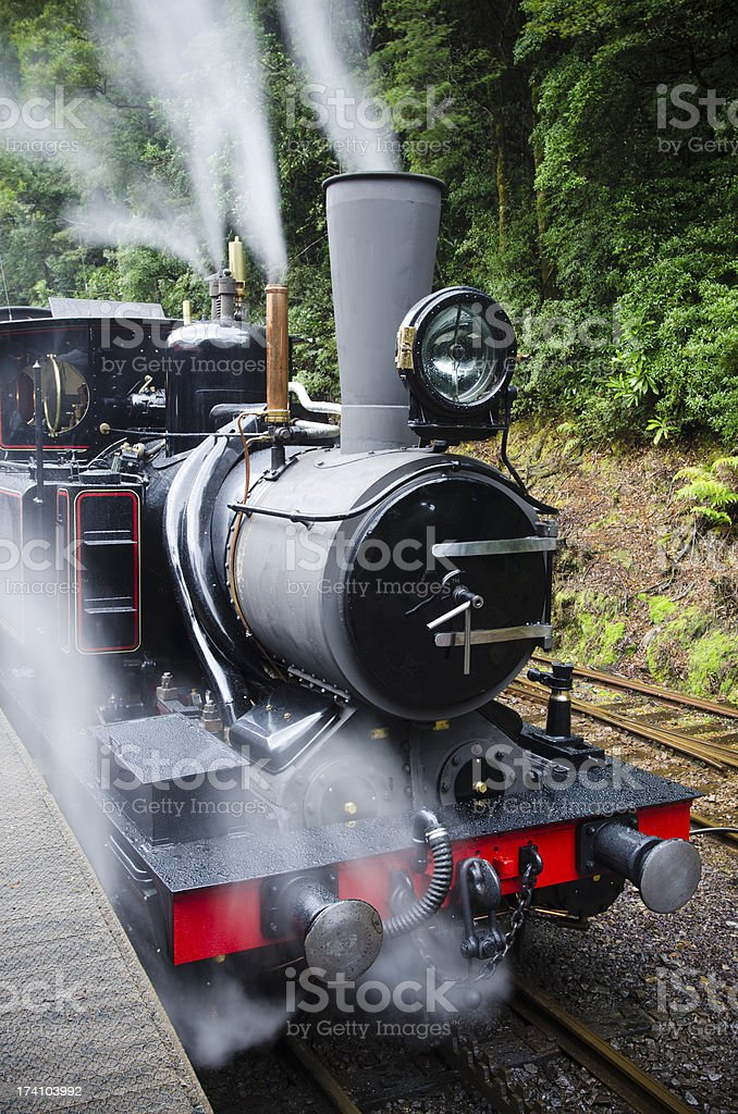Working steam train in Tasmanian wilderness stock photo