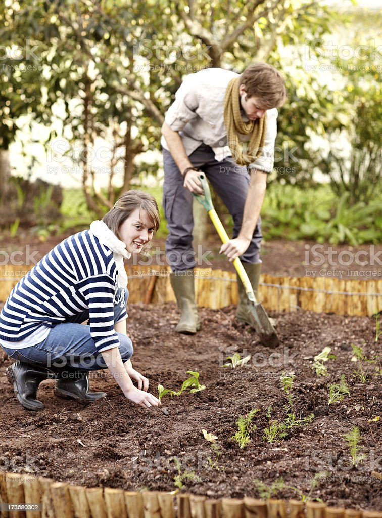 Working together in their garden royalty-free stock photo