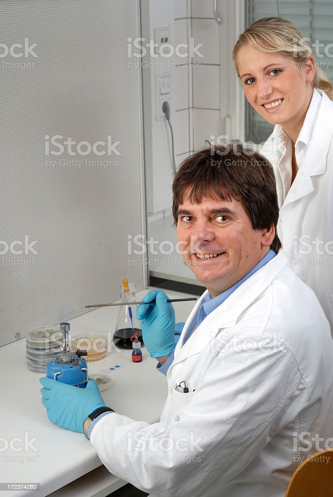Working together stock photo