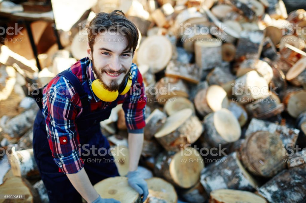 Working with firewood stock photo