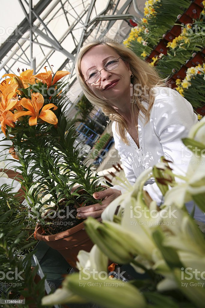 Working with flowers royalty-free stock photo
