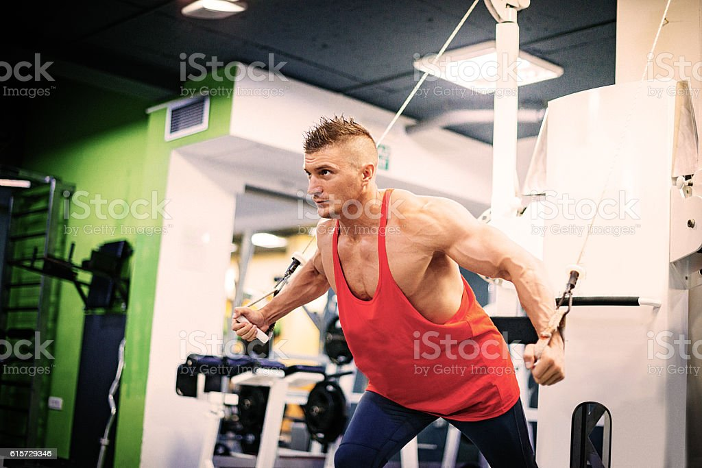 Workout in gym, exercising pectoral muscles stock photo