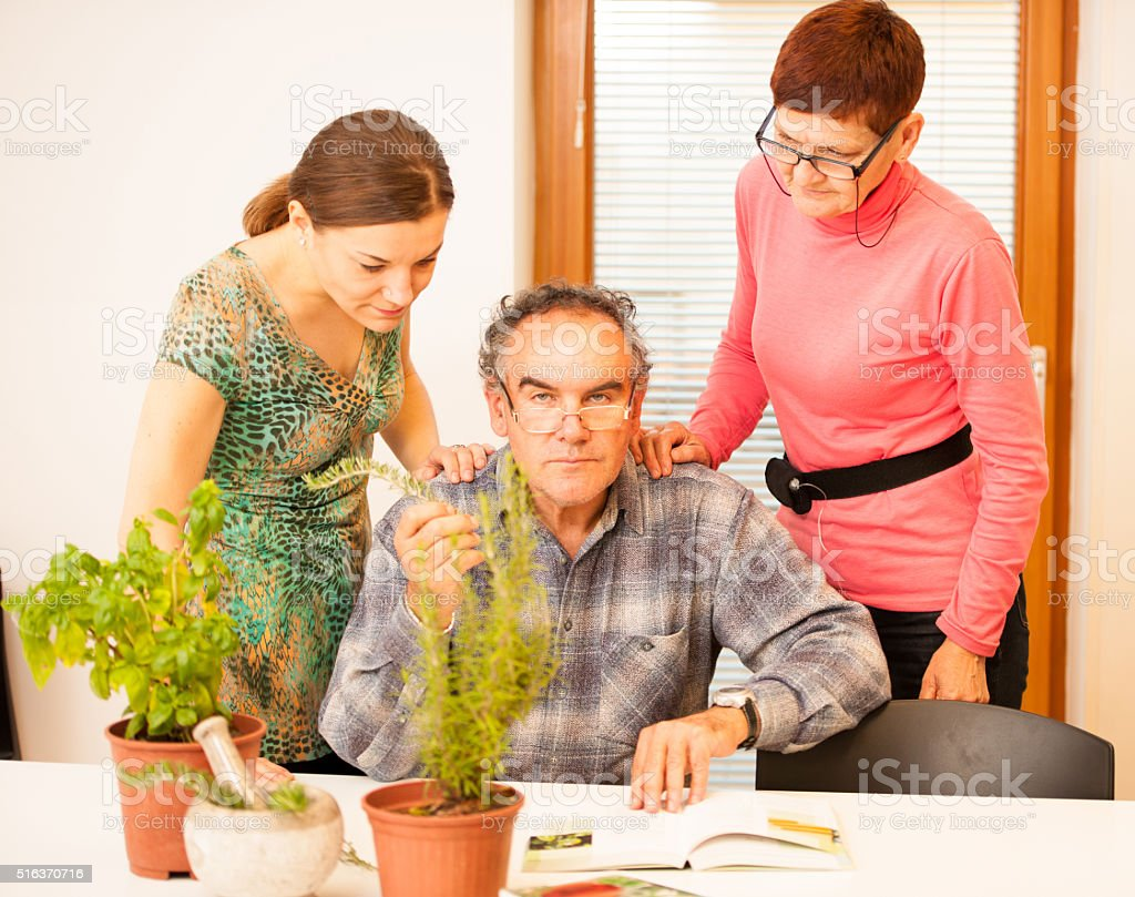 Workshop of knowing herbs, touching and smelling basil and thym. stock photo