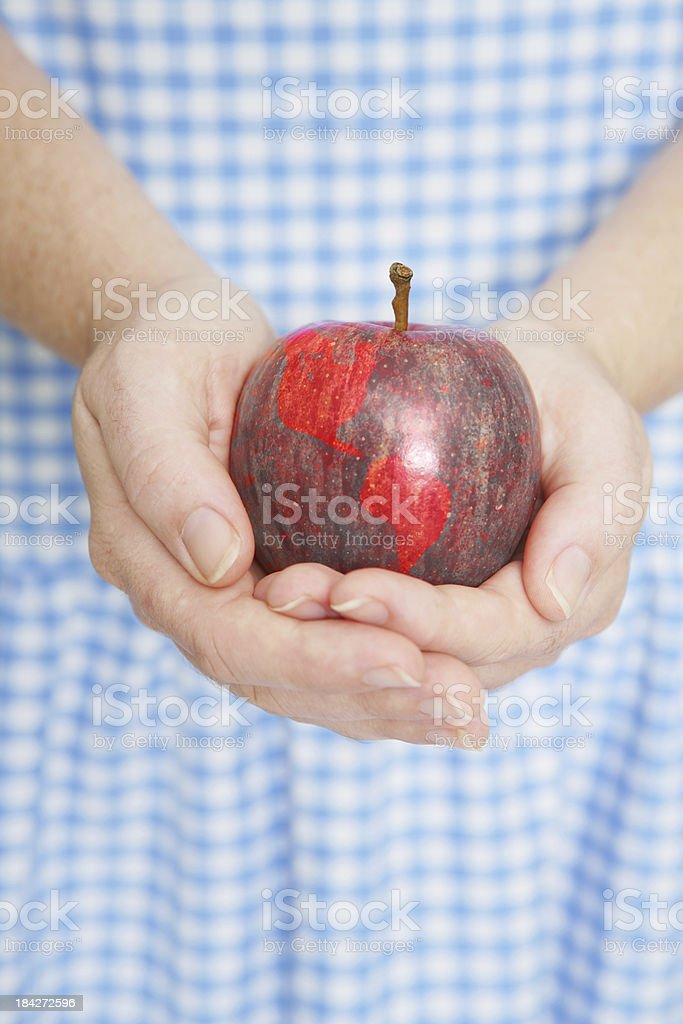 World Apple stock photo