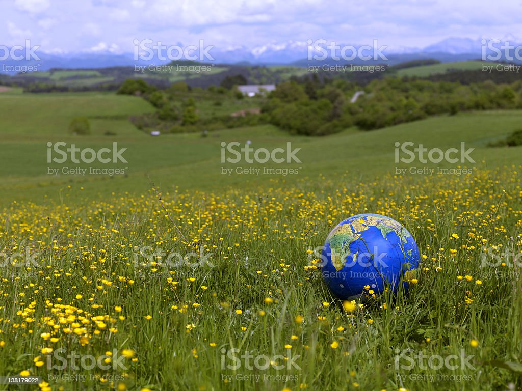 World ball on field of flowers royalty-free stock photo