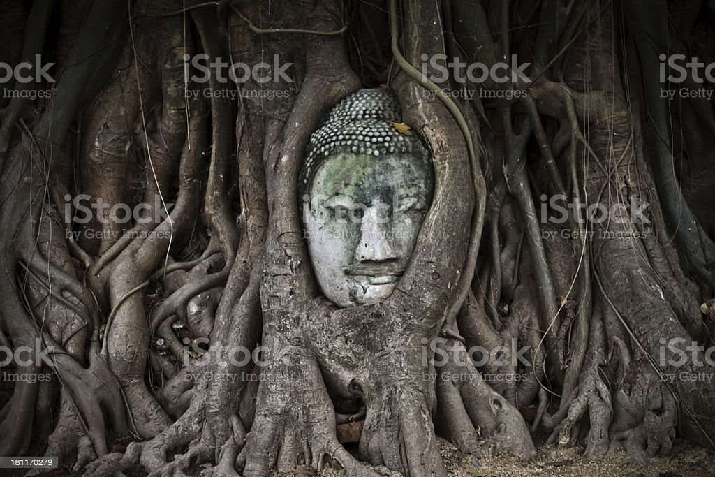 World Heritage the head of  sandstone buddha royalty-free stock photo